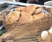 Pan de trigo (Cochabamba)